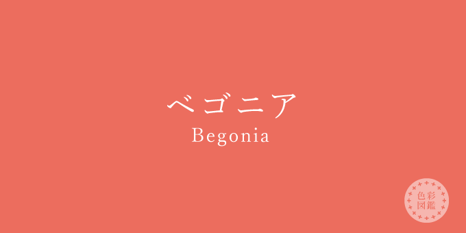 ベゴニア(Begonia)の色見本
