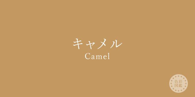 キャメル(Camel)の色見本