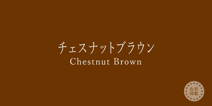 チェスナットブラウン(Chestnut Brown)の色見本