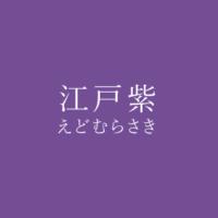 江戸紫(えどむらさき)の色見本
