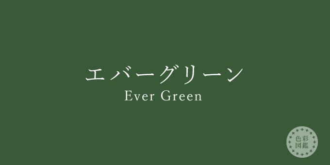 エバーグリーン(Ever Green)の色見本