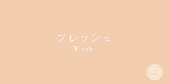 フレッシュ(Flesh)の色見本