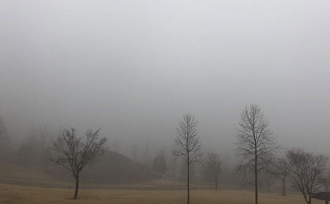 霧のかかる公園