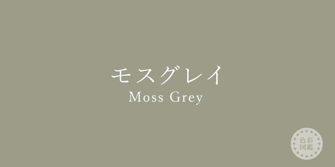 モスグレイ(Moss Grey)の色見本