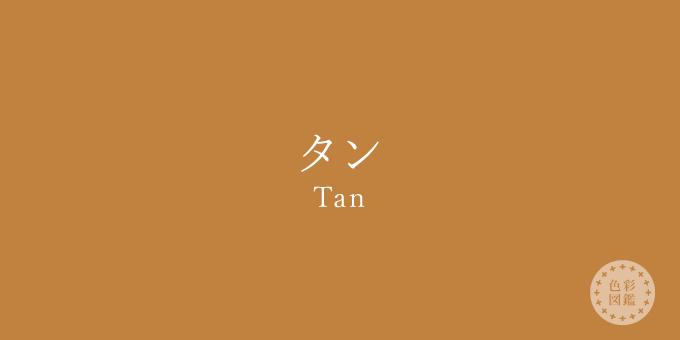 タン(Tan)の色見本
