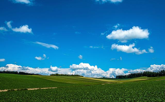 空が青い理由