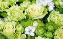 緑色の花の花言葉