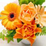 オレンジ色の花の花言葉