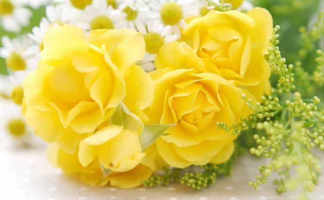 黄色い花の花言葉
