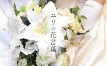 色で変わる百合の花言葉