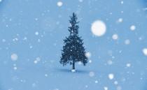 冬の色のイメージ